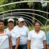 01 Forest-Workers Frauen