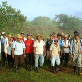 01 Forest-Workers 2